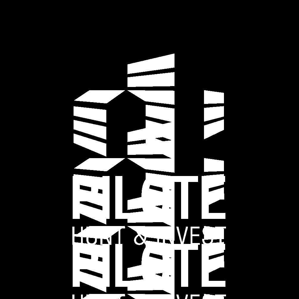 Pilote Hunt & Invest